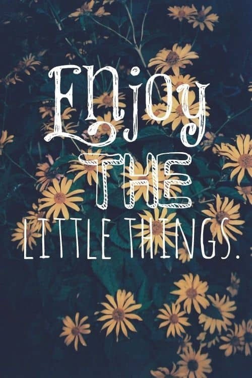 Enjoy the Little Things Quote