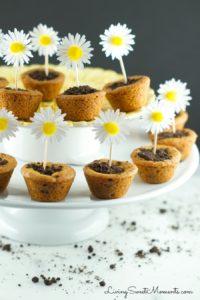 flower-pot-cookies-recipe-6