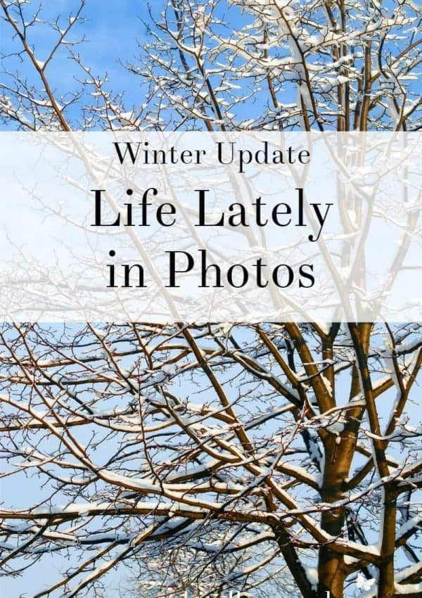 Life Lately in Photos- Winter Update