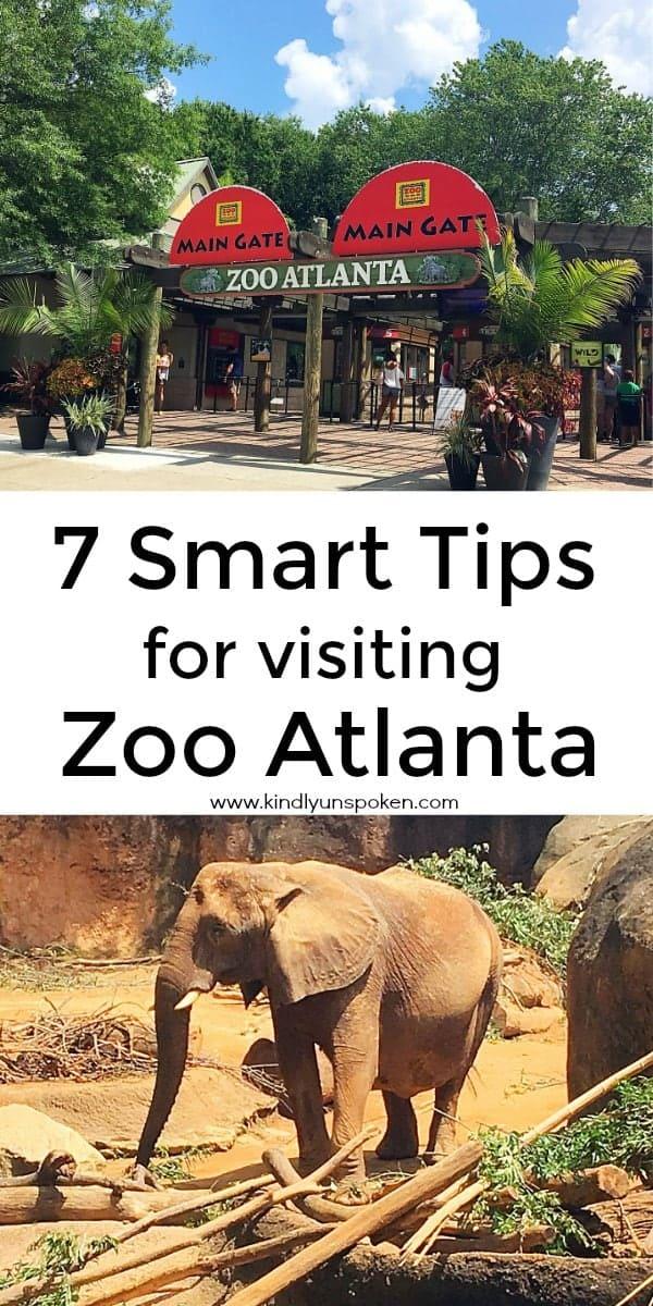 Smart Tips For Visiting Zoo Atlanta Kindly Unspoken