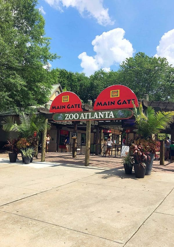 Smart Tips for Visiting Zoo Atlanta