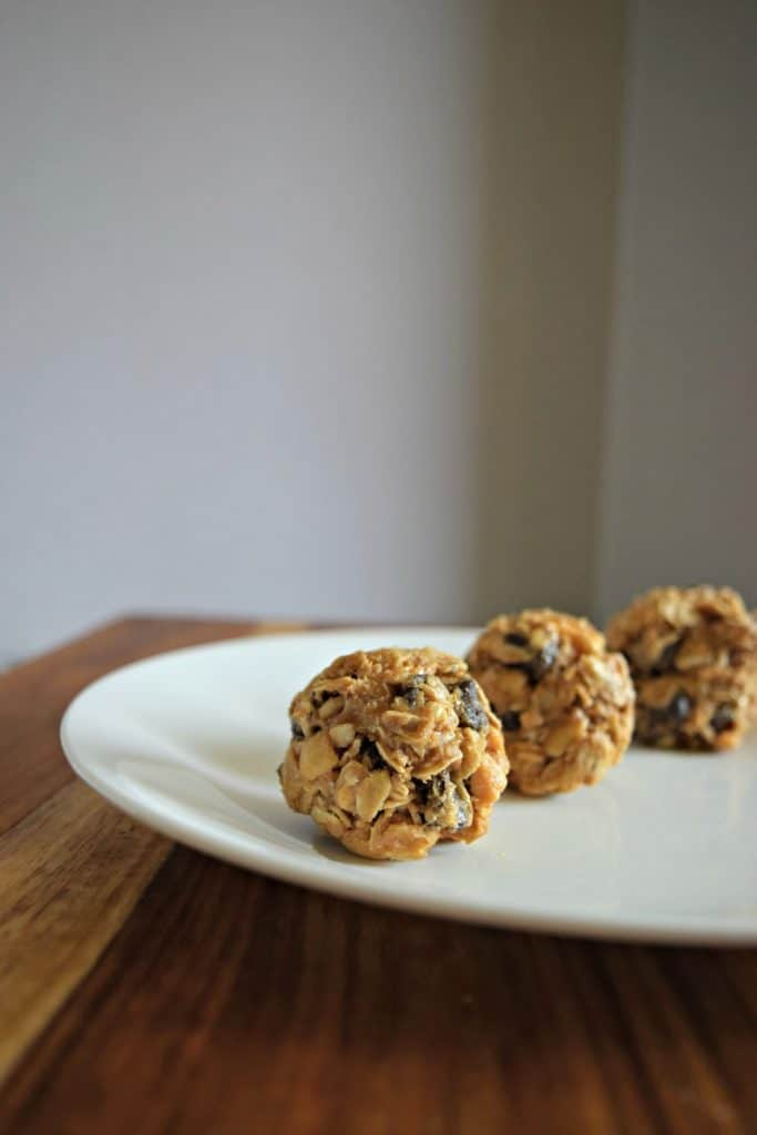 No Bake Peanut Butter Bites - Check out these 15 Healthy and Delicious No Bake Energy Balls with yummy flavors like chocolate chip, peanut butter, lemon coconut, brownie bites, and more! These no bake energy bites are an easy on-the-go snack, gluten-free, and made with healthy, protein-filled ingredients like oats, dates, peanut butter, banana, and chia seeds. They're perfect for clean-eating, paleo, vegan, and keto diets. #energyballs #energyballrecipes #energybites #nobake #healthysnacks