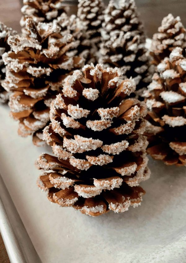The Easiest DIY Snow Covered Pinecones